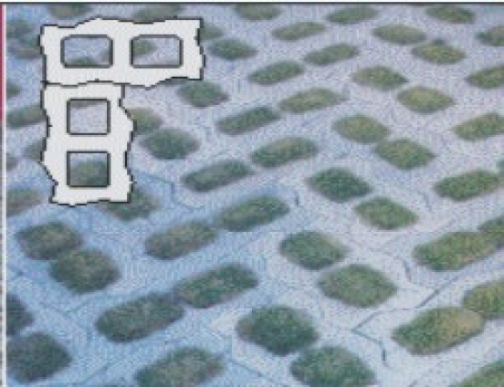 Concregrama autotravante pavs - Foto 1