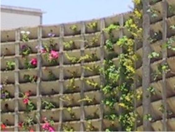 Muro ecológico - Foto 1