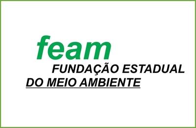 Fundação Estadual do Meio Ambiente - FEAM