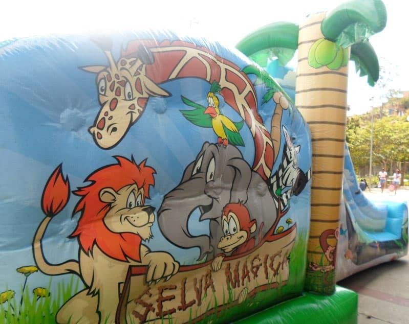 Selva Mágica - Foto 9
