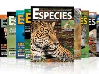 Revistas - Foto 2