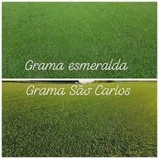 GRAMAS - Foto 2