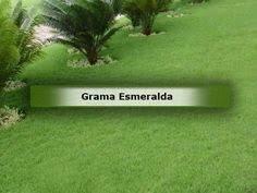 GRAMAS - Foto 3