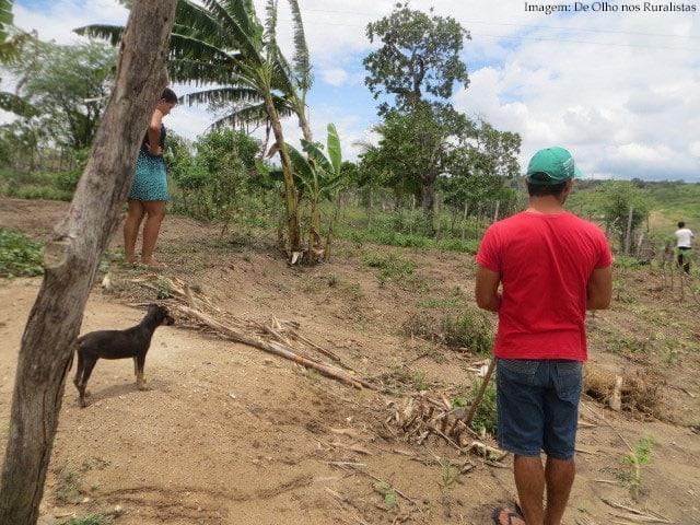 Imagem da notícia Corte no Programa de Aquisição de Alimentos ameaça famílias do Semiárido