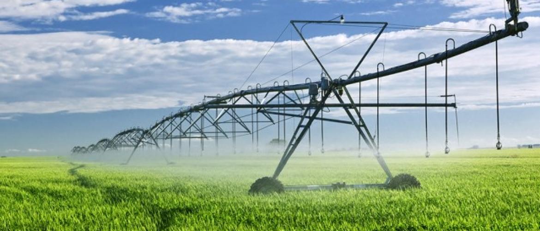 Viabilidade Econômica de Atividades Agrícolas
