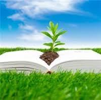 Educacaoambientalpodevirarmateriaobrigatoria-20150805112150.jpg