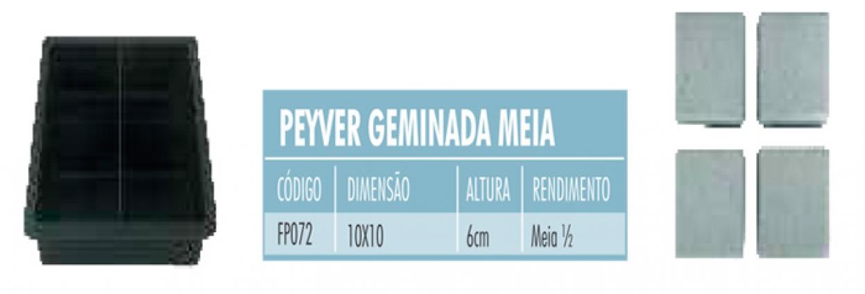 FormasPlasticas-20150313115635.jpg