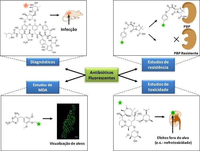 Aplicac807o771es-antibio769ticos-resiste