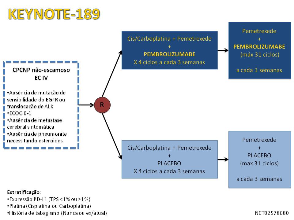 Noticia-28_B.png