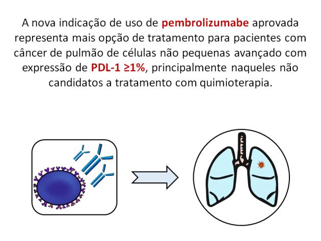 Pulmofoto02.png
