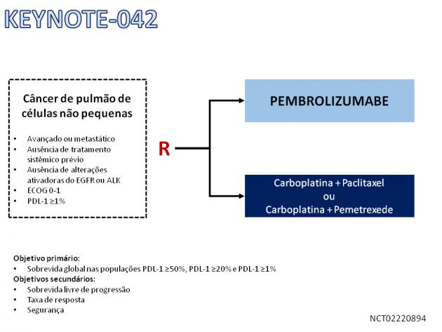 pulmofoto01.png