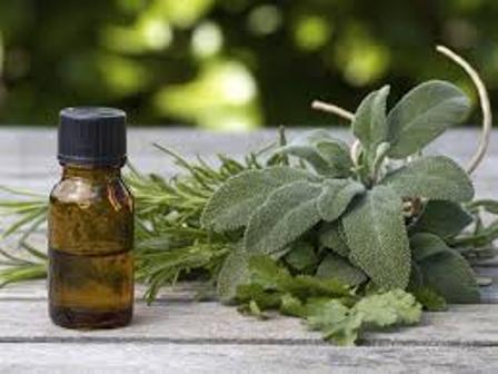 Aromaterapia(1).jpg