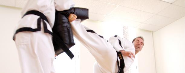 Taekwondo_landing_adult.jpg