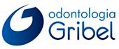 Odonto Gribel, dentista bh, ortodontista bh, alinhadores transparentes bh, odontopediatria bh, prótese bh, tratamento de canal bh, implante guiado bh, ortopedia funcional dos maxilares bh - Odonto Gribel